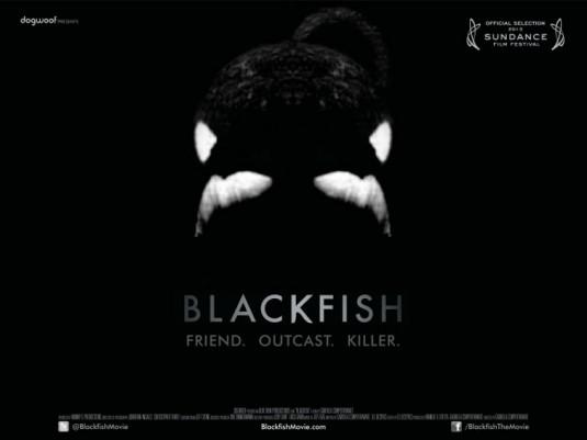 blackfish_ver2